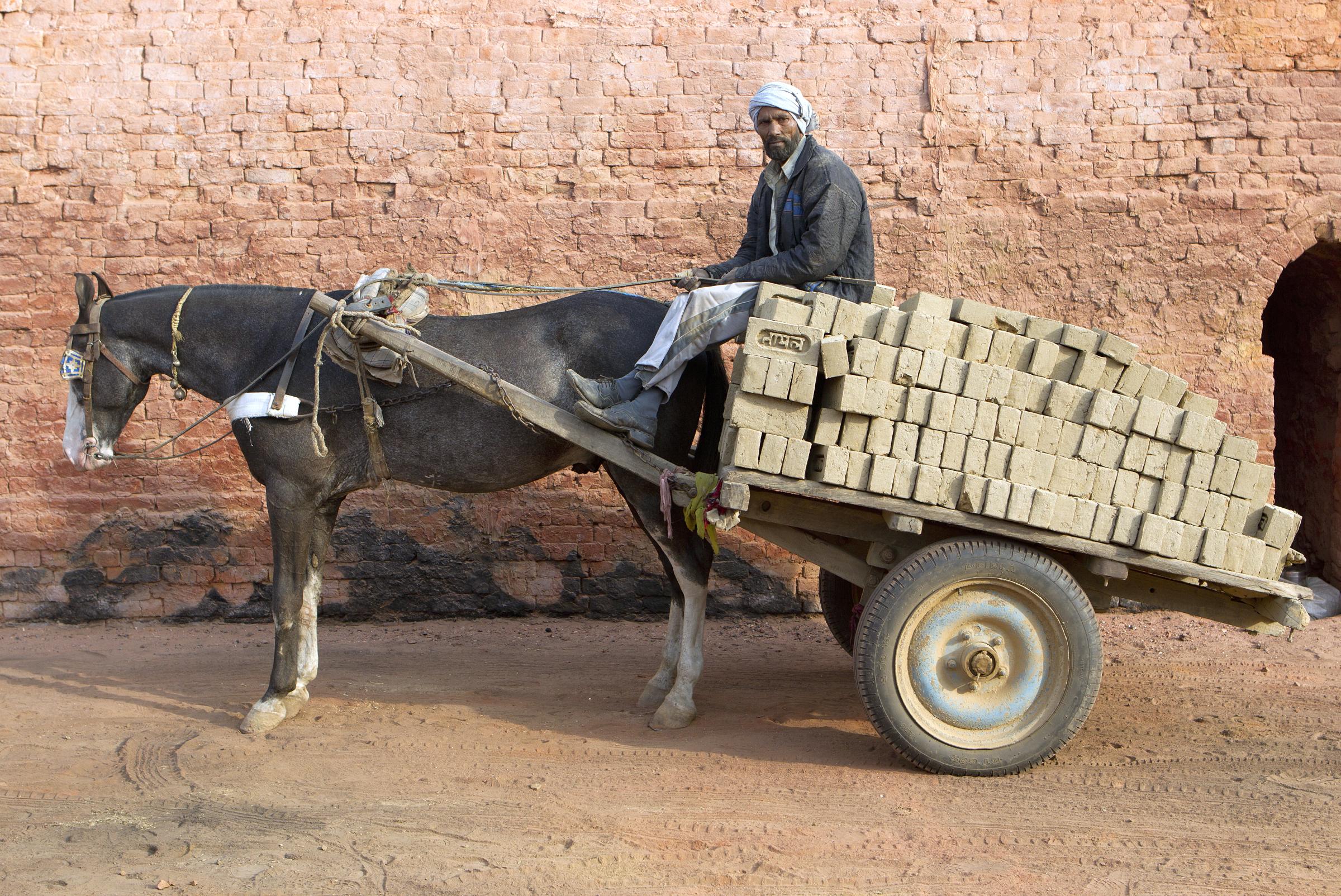overloaded horse bricks wagon Noor, 62, and his horse Basanti at the BK Tayal kiln, Uttar Pradesh, India. SMALL.png
