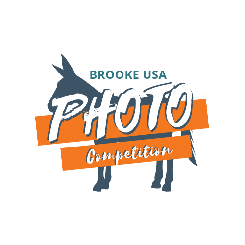 Photo Competition (1).png