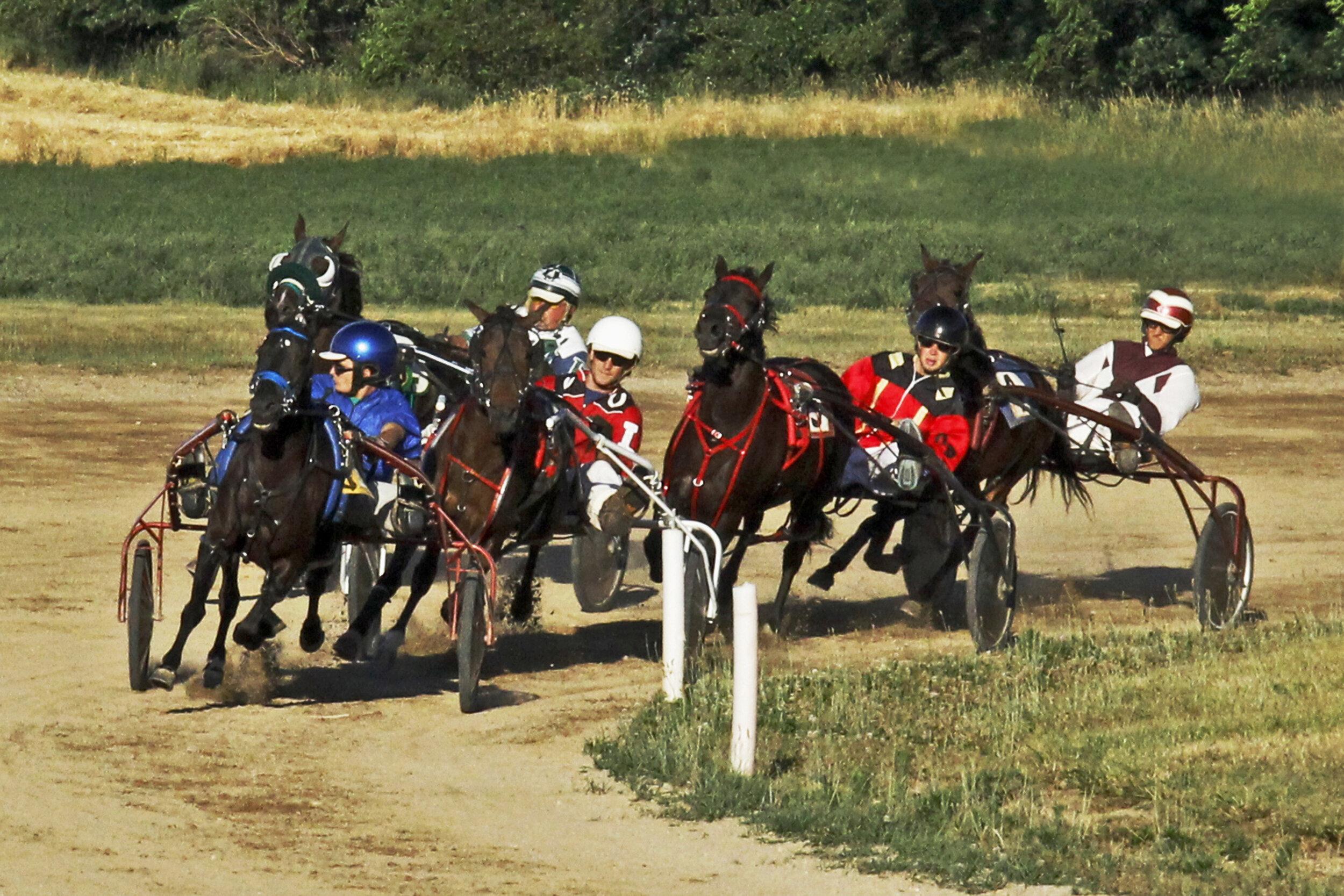 Jim McClean - Pony Sulkie Race