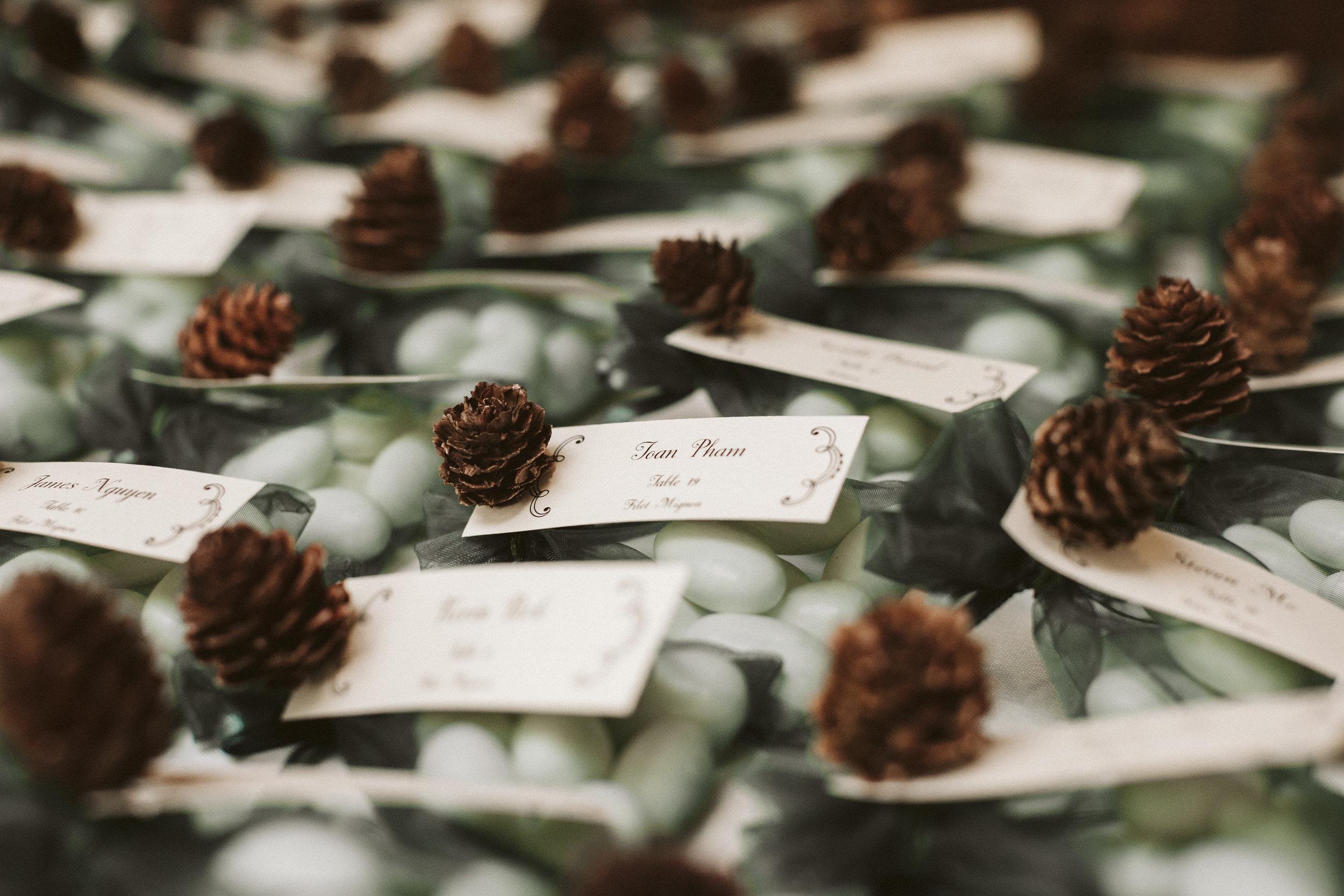 _MG_4903vildphotography-wedding-tahoewedding-laketahoe-Jeena_Hayden.jpg