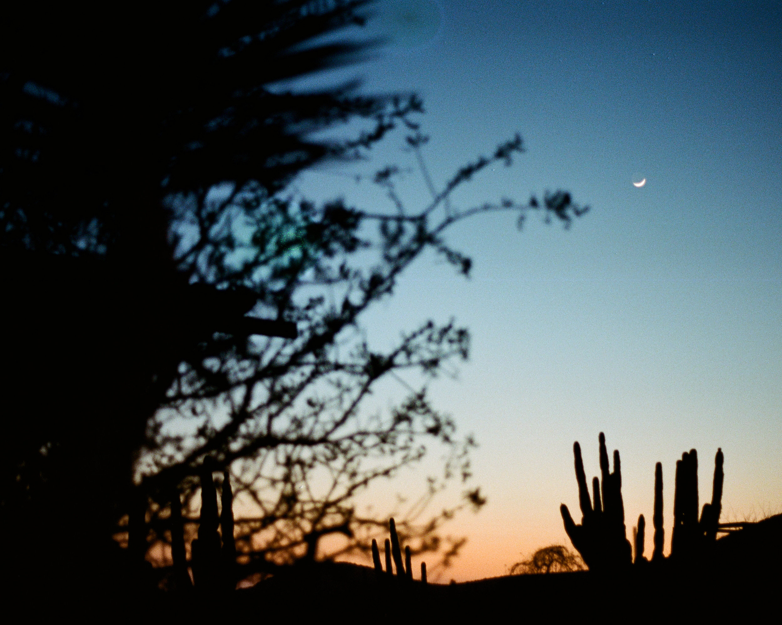 Photograph of sunset and moon in Baja Mexico by photographer Jon Moore, Creative Director at The Beans and Rice