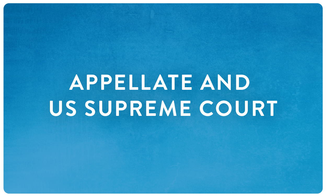 HOTM 2018 - Blue Category Button__appellate and supreme.png