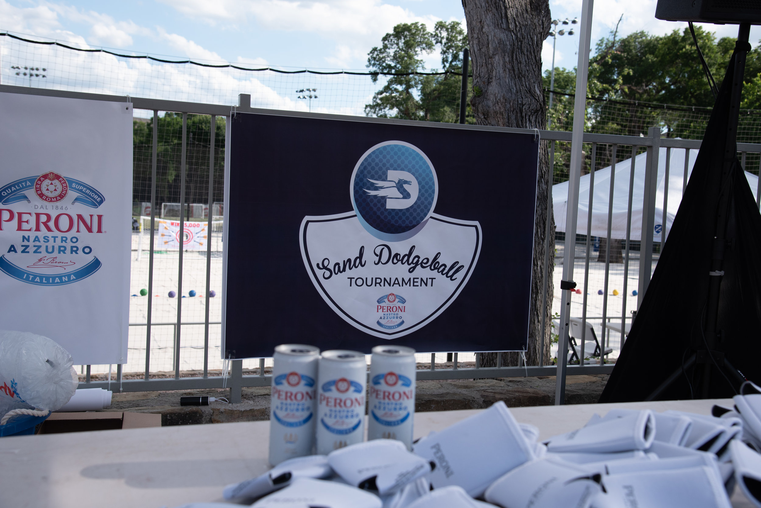 DISE Dodgeball 2019-28.jpg