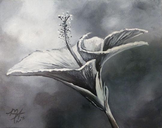 Black & White Flower Study - 11x14 acrylic