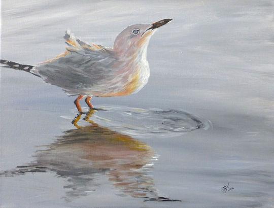 Bird Reflection - 11x14 acrylic