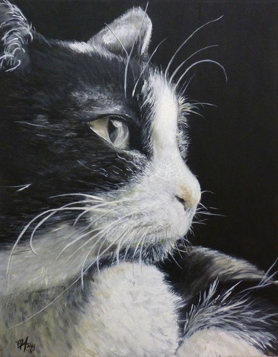 Black & White Cat - 11x14 acrylic