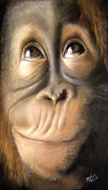 Charles the Monkey - 11x20