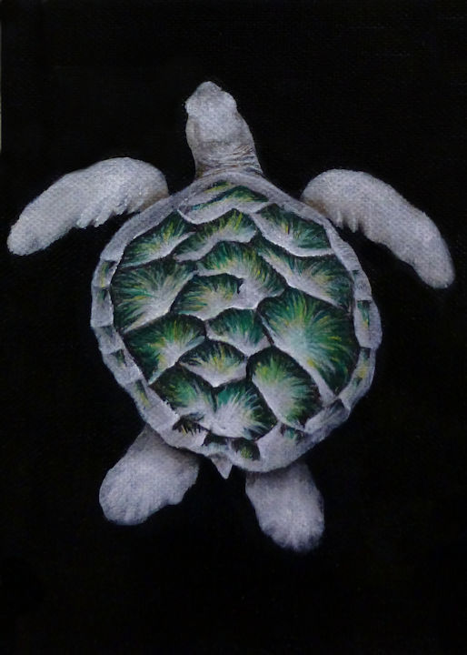 Left Sea Turtle - 5x7 acrylic