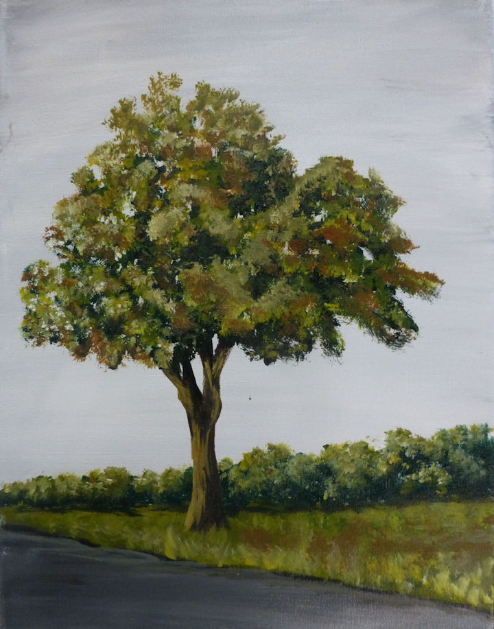 Maple Tree - 11x14 acrylic
