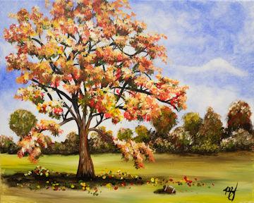 Autumn Maple Tree with Football