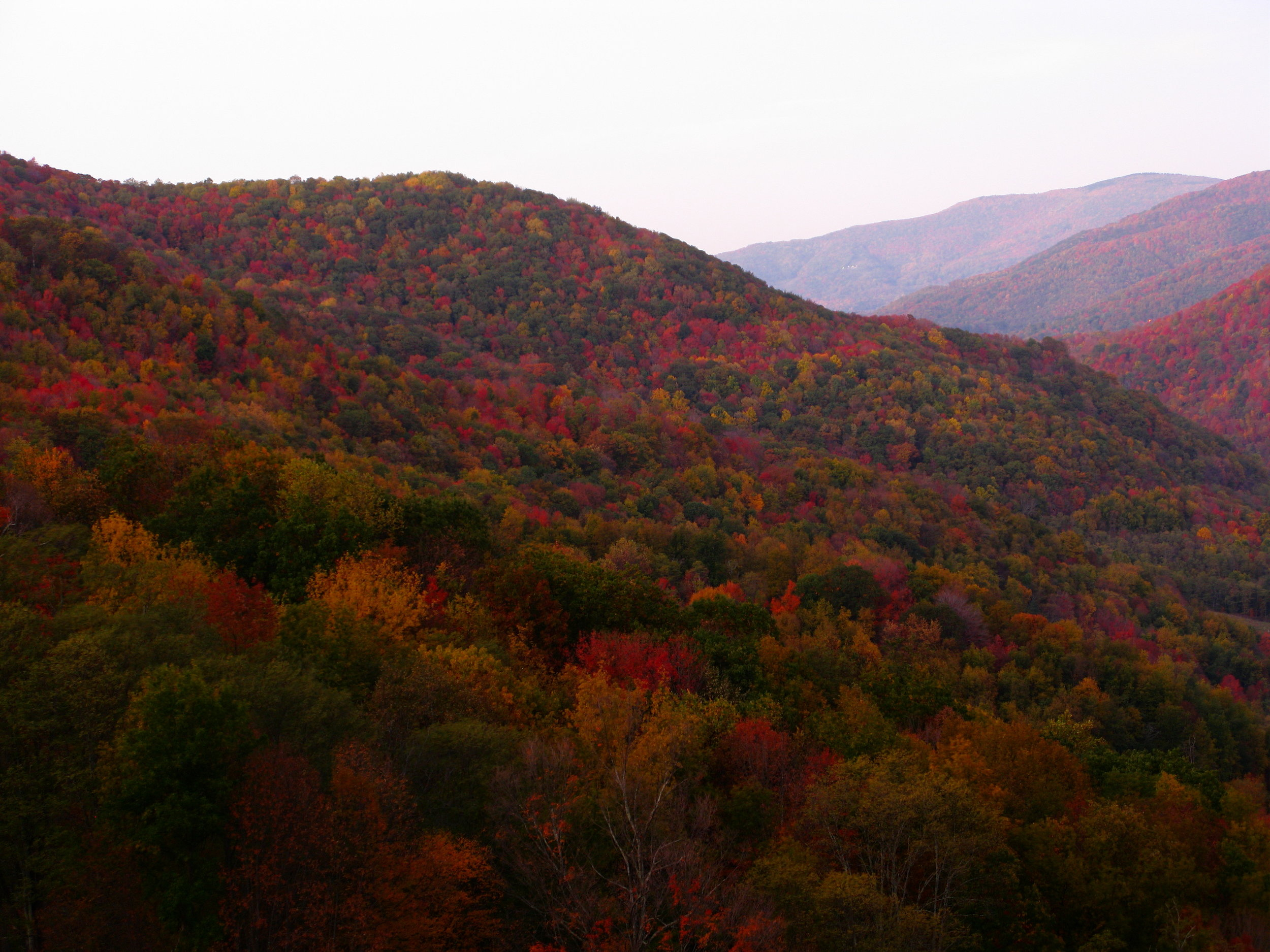 Fall-mountains_-_West_Virginia_-_ForestWander.jpg