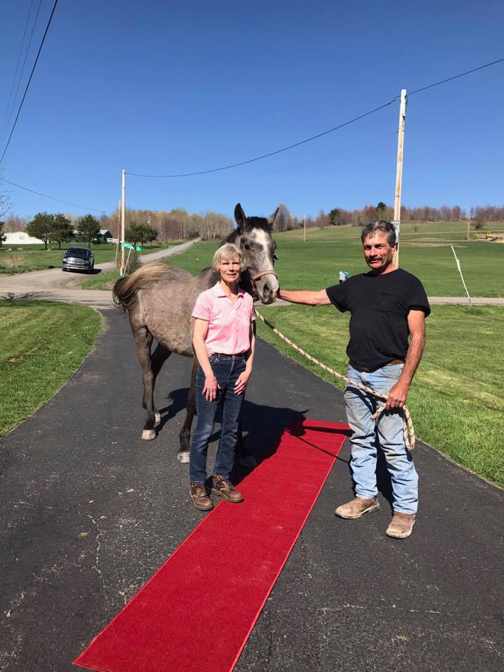 Mr. Morgan'a adoption to Dee Hoffman on April 23, 2017