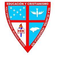 HSES logo.jpg