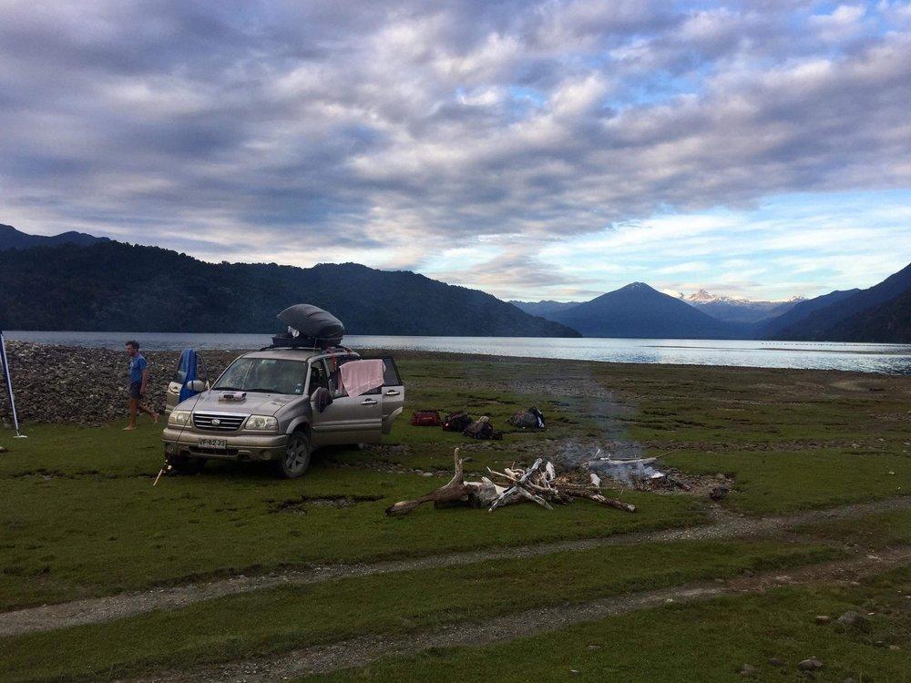 Patagonian life