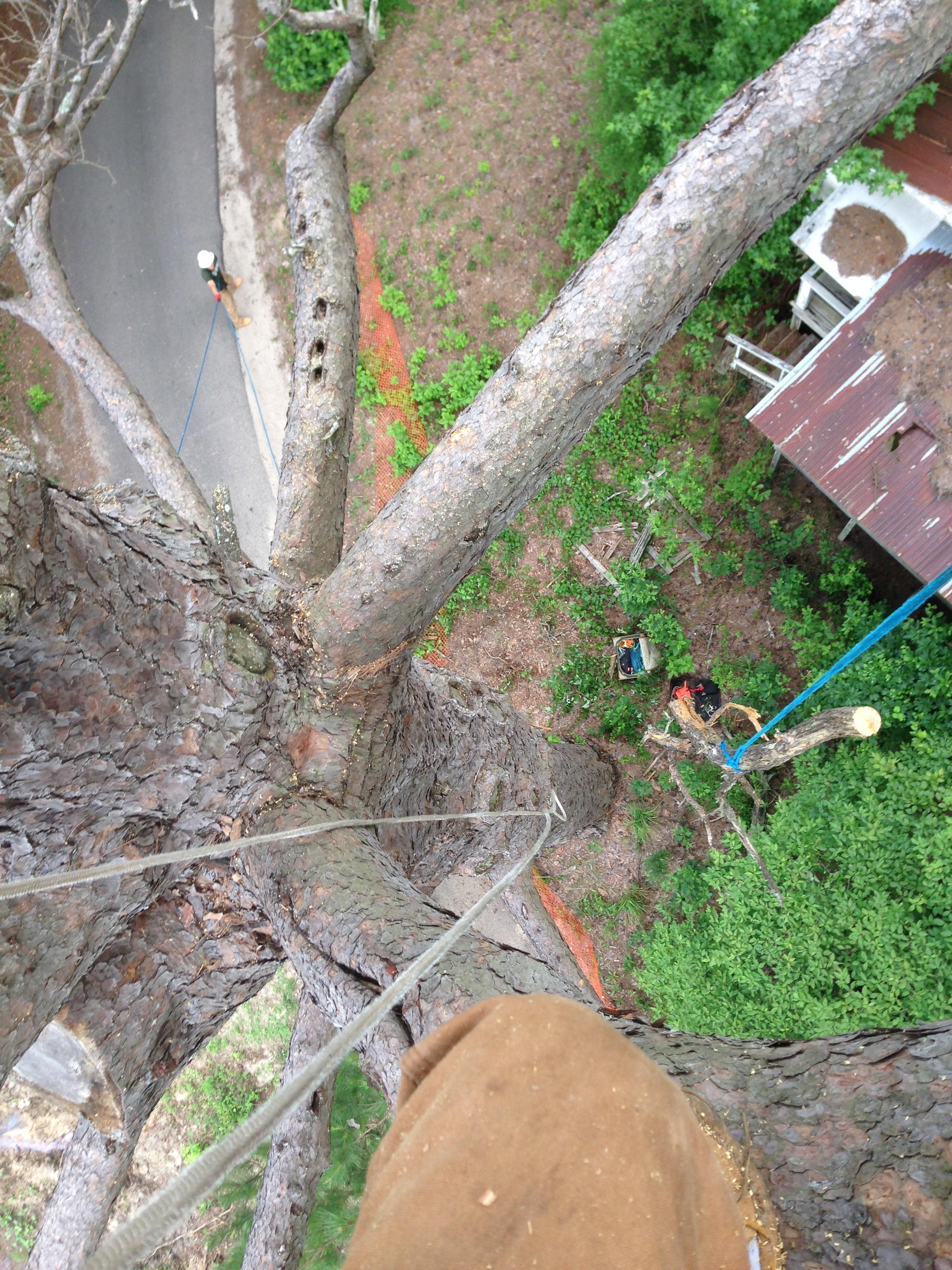 Hazard Pruning