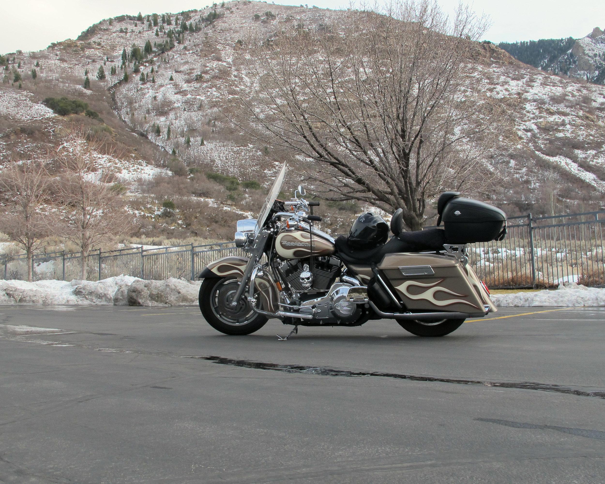 Feb 1 Harley.jpg