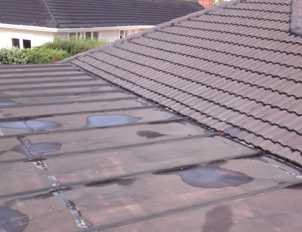 flat roof 2.PNG