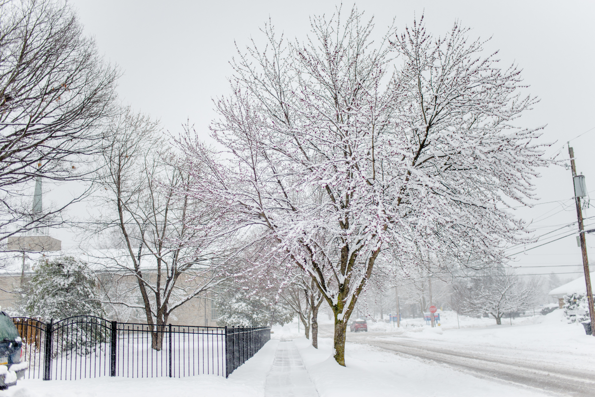 Kirsten-Smith-Photography-Snow-Day-34.jpg