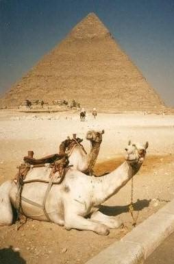 CamelPyramid_KStanleyPhoto.png