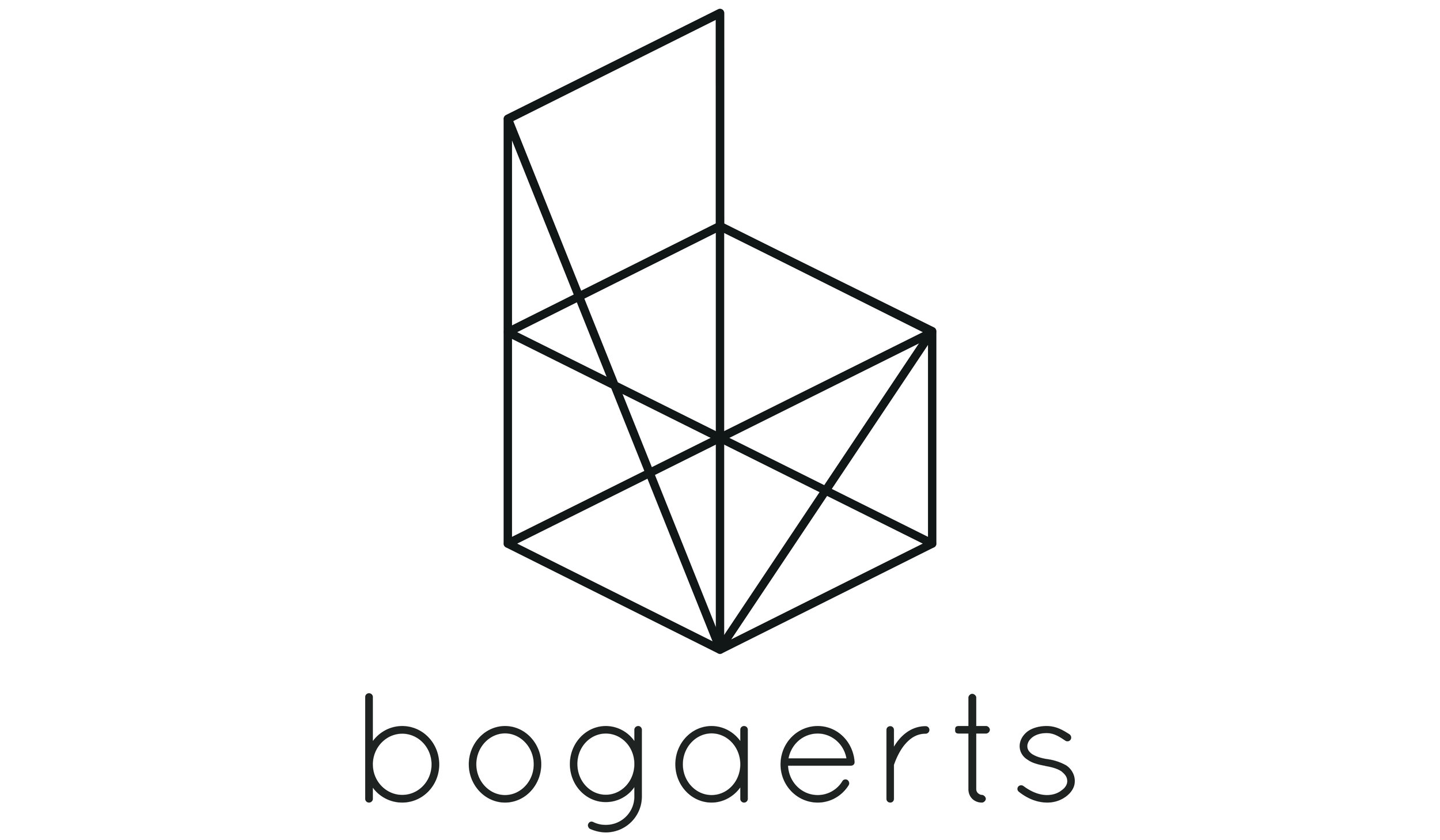 Logo_bogaerts_wireframe_12x7.jpg