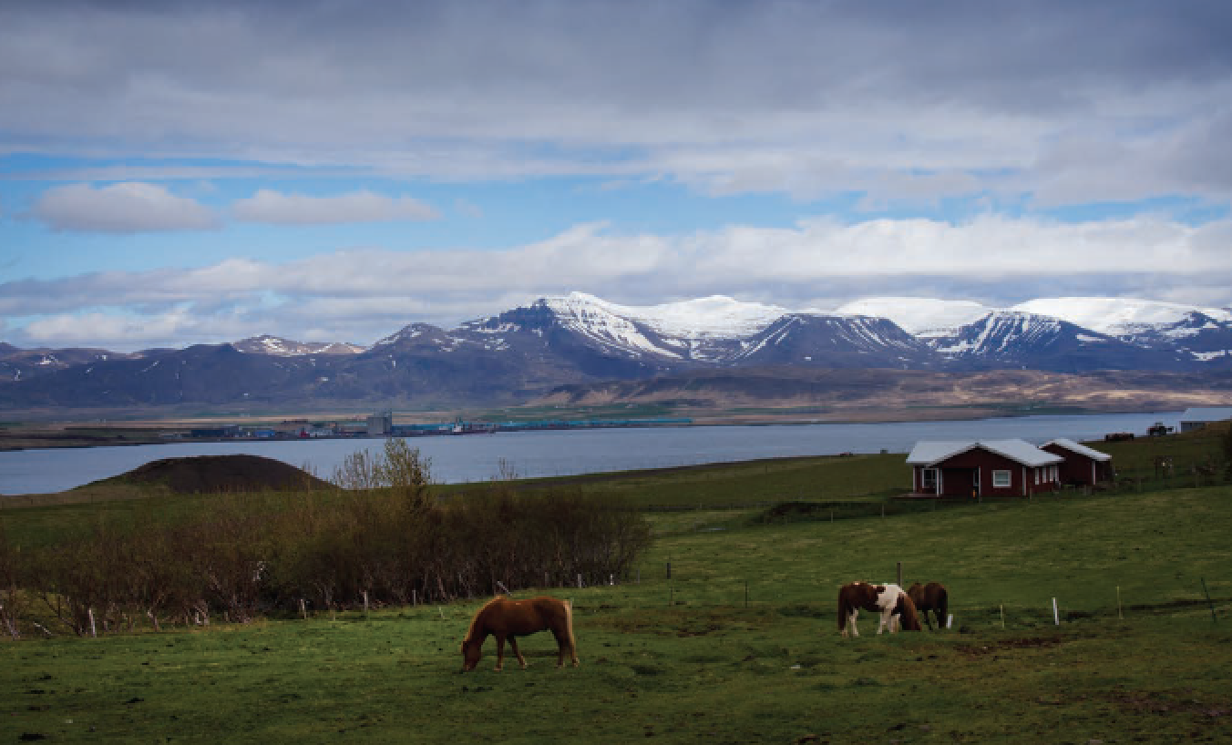 A travel article about Iceland-Flavors