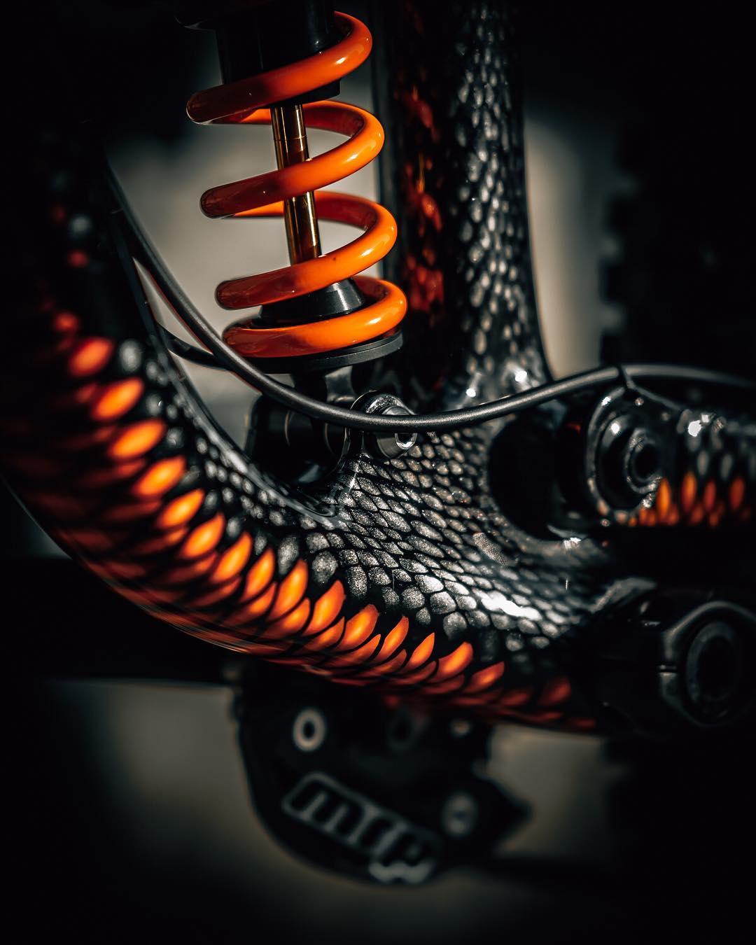 Snake bike bb.jpg