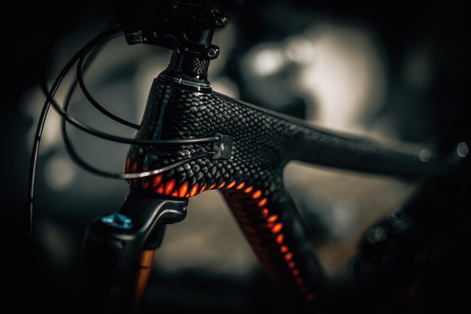 Snake bike Head tube.jpg