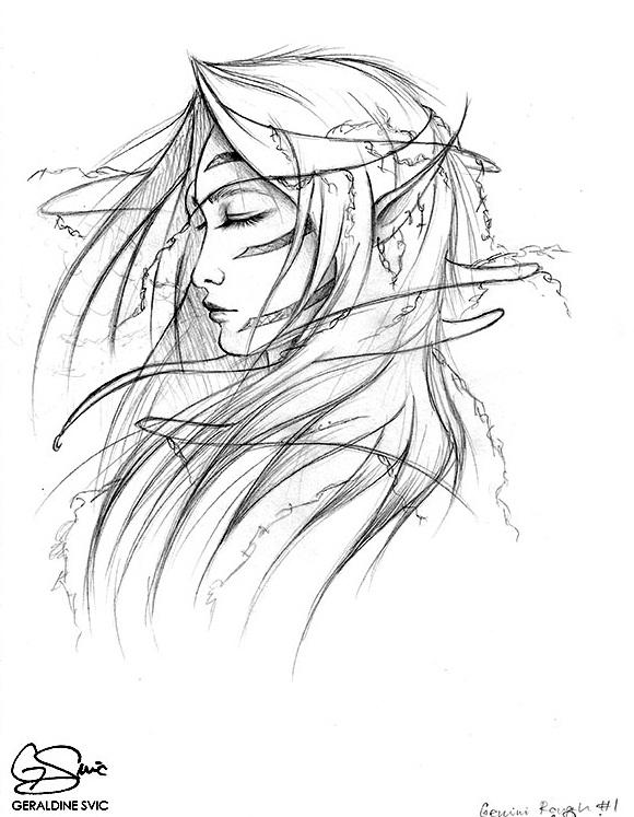 "Castor  Sketch  ""Castor Sketch"" graphite drawing by Geraldine Svic."