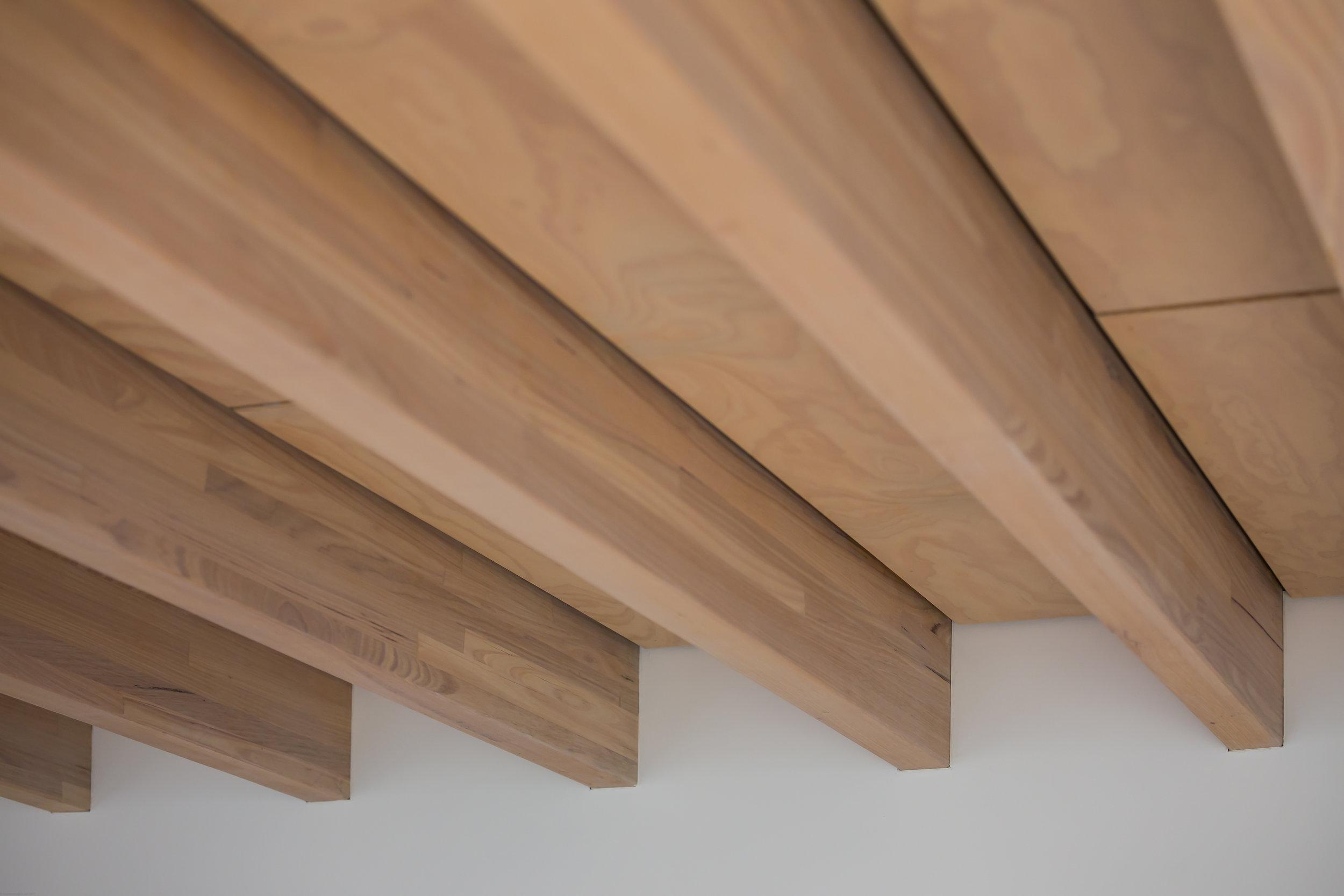 Laneway Residence_Ceiling Detail