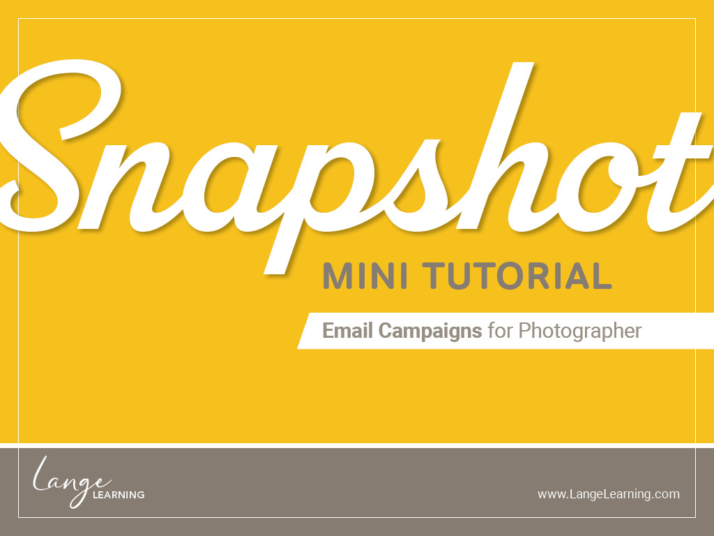 LL – Snapshot 03 – Email Campaigns cover.jpg