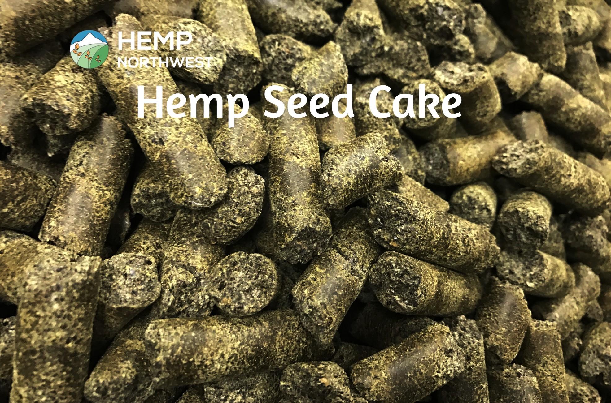 American Grown Hemp Seed Cake freshly pressed in Oregon at the Hemp Northwest Facility