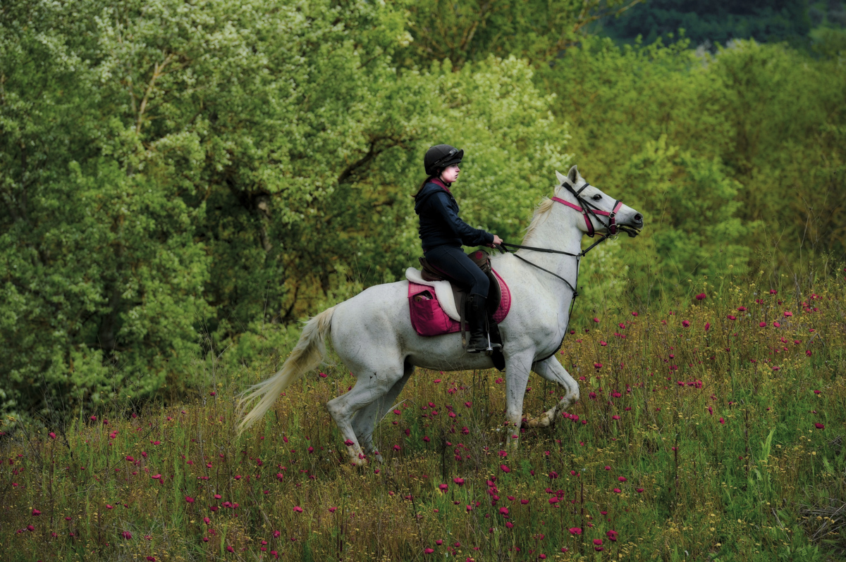 You literally ride through fields of poppies to wine and cheese tastings. Then you tie your horse up to a clothes line!