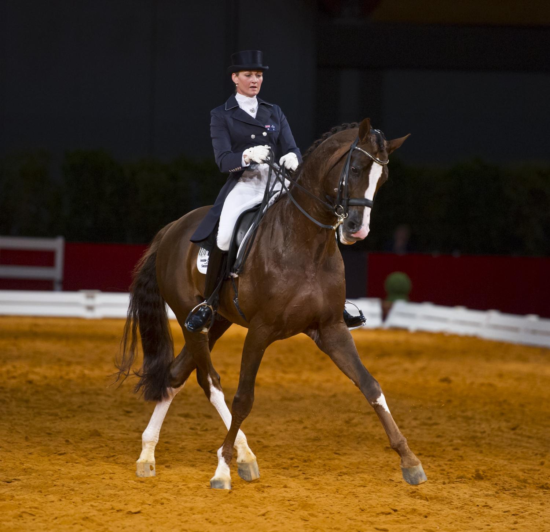 equestrian vimeo (8 of 78).jpg
