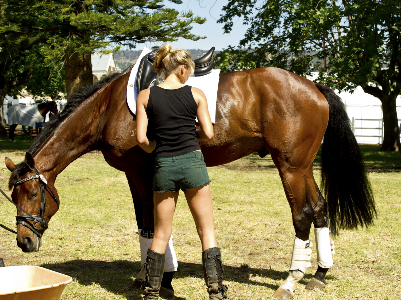 equestrian vimeo (18 of 78).jpg