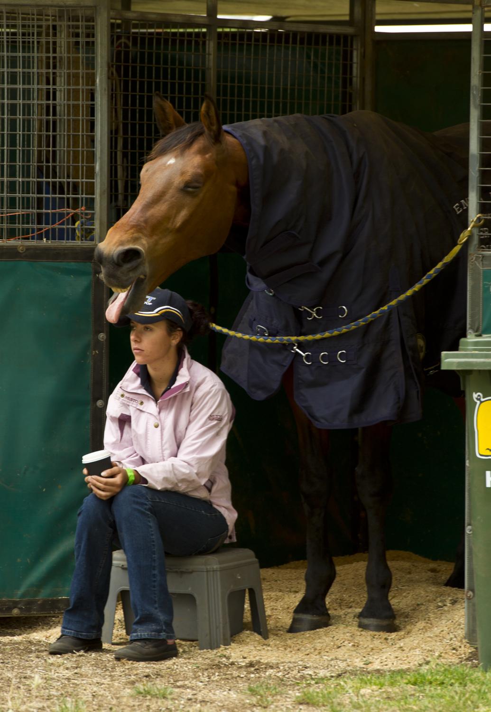 equestrian vimeo (25 of 78).jpg