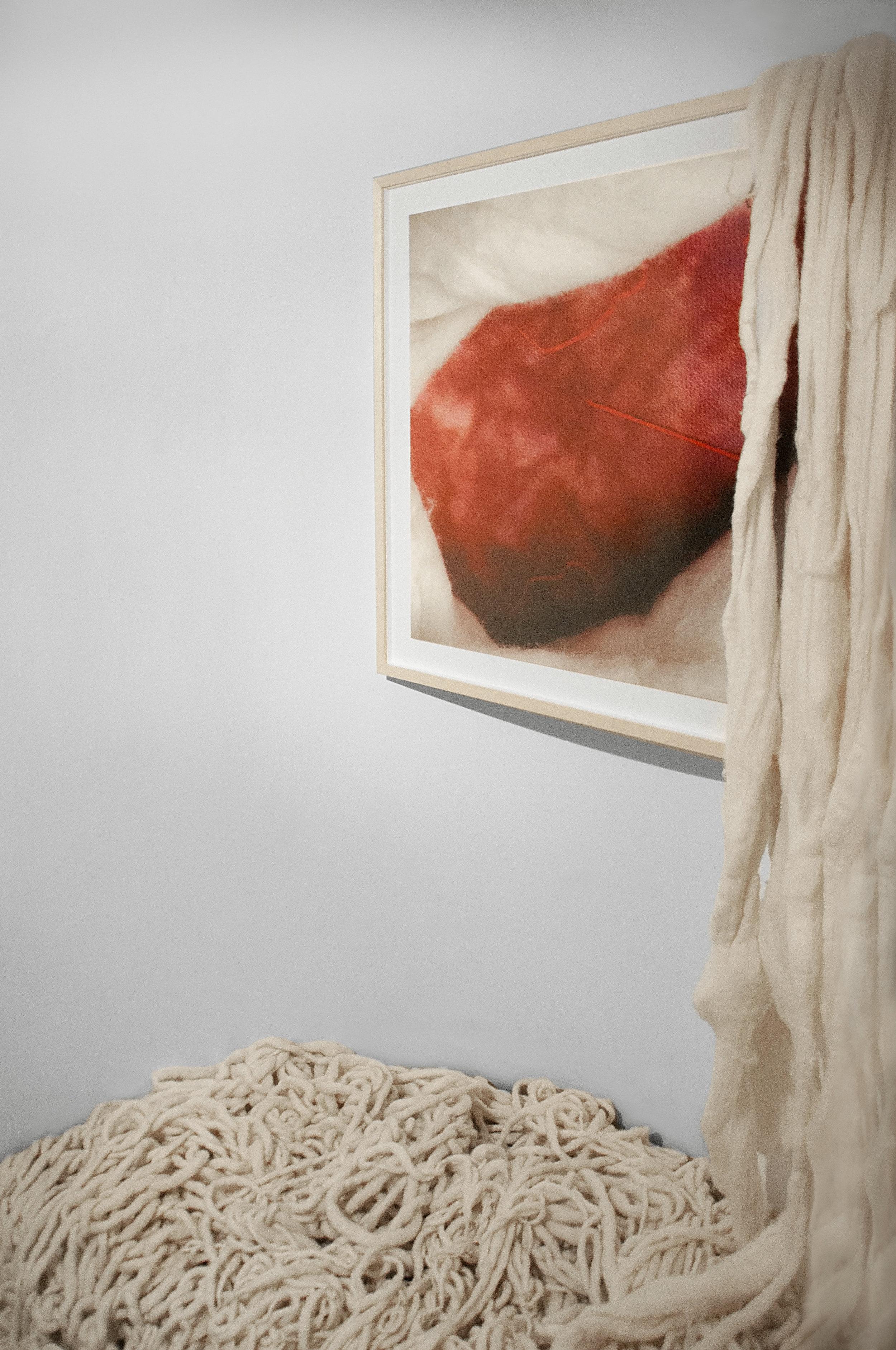 Instalação de Arte Ninho - Ana Biolchini - Brasil