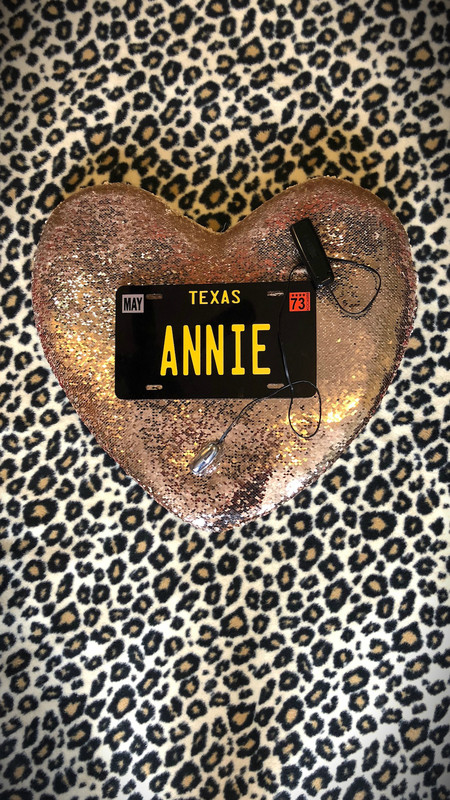 Texas Annie: The Legend of the Moan Ranger