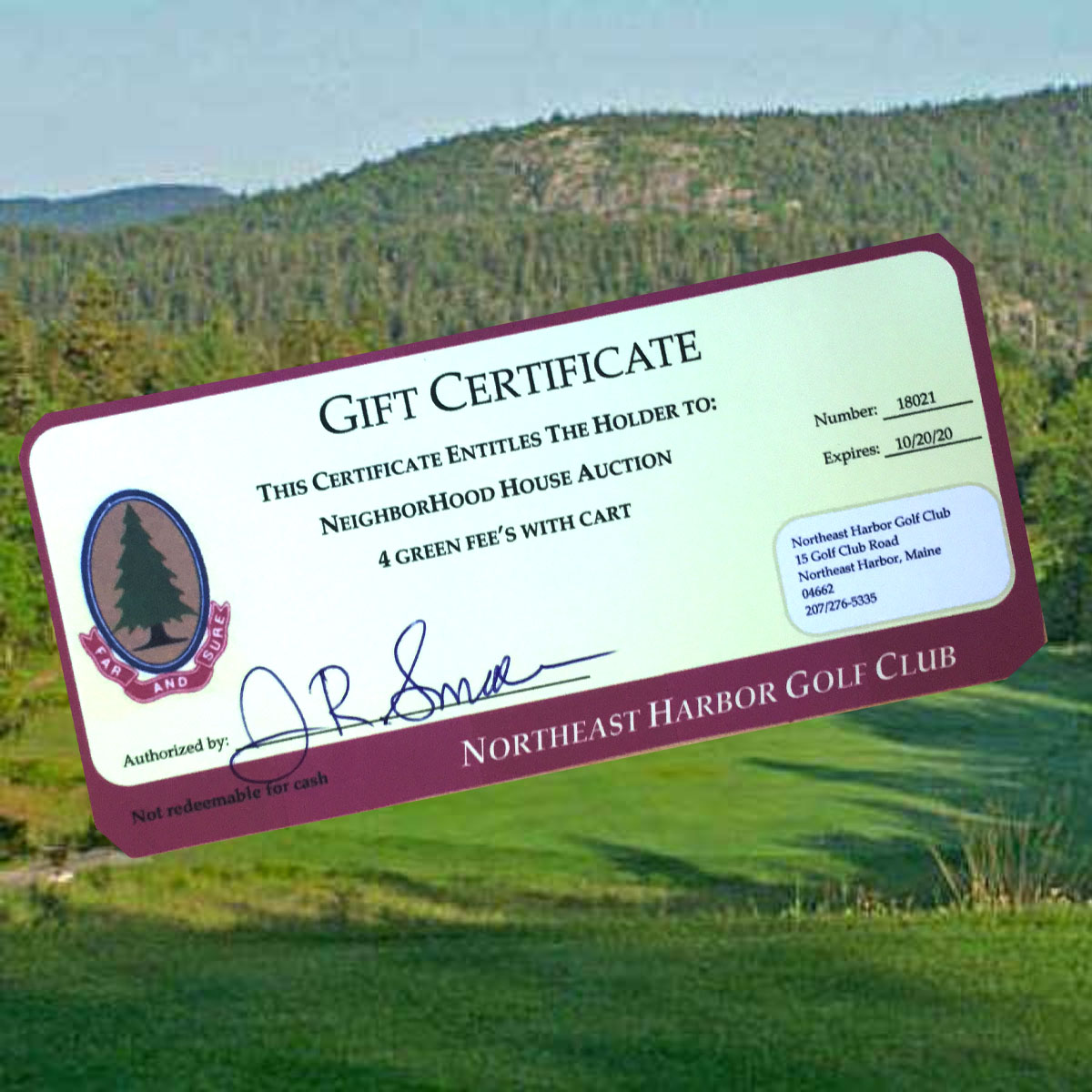Golf Outing - Fore! The NEH Golf Club has generously provided this certificate for 4 greens fees and with cart. The perfect way to spend a late summer afternoon or entertain guests! Certificate not valid July or August.