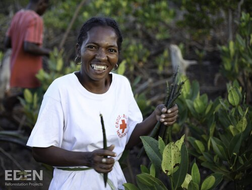 Madagascar_2012_Malagasy woman holding propagules.jpg
