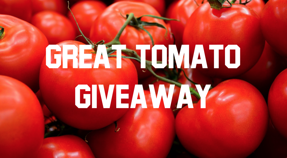 Join the Great Tomato Giveaway (GTGA)! -  Phase 1, The Pick-up, happened May 19. Phase 2, The Delivery to Local Food Banks continues as long as your congregation has a harvest. We encourage your congregation to bring fresh produce to your closest food bank throughout August and September. Your ongoing generosity to those in need is appreciated. If you have further questions about the GTGA, please email Ford Meiser (fordm14@yahoo.com).