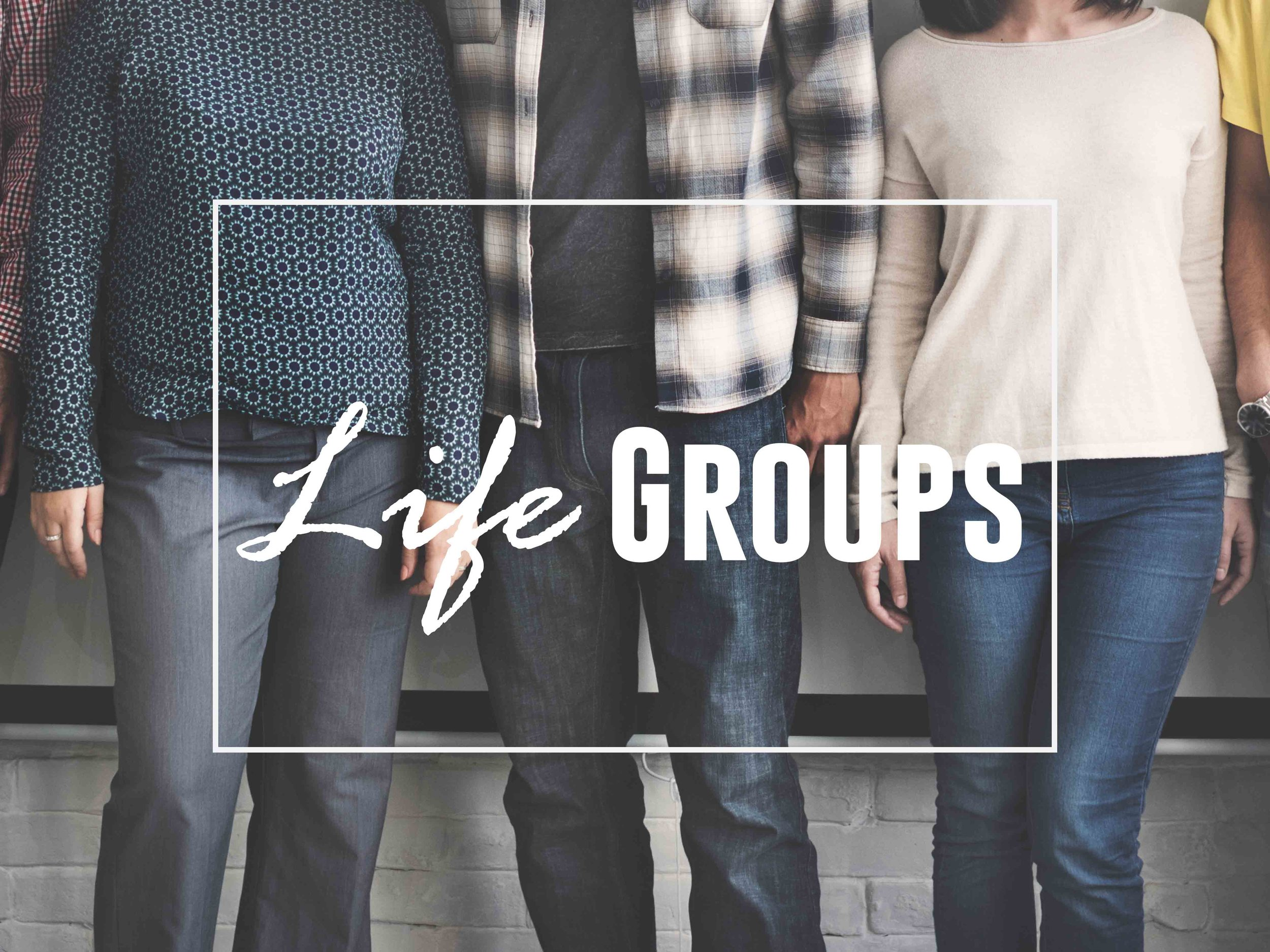 Learn more about our life groups