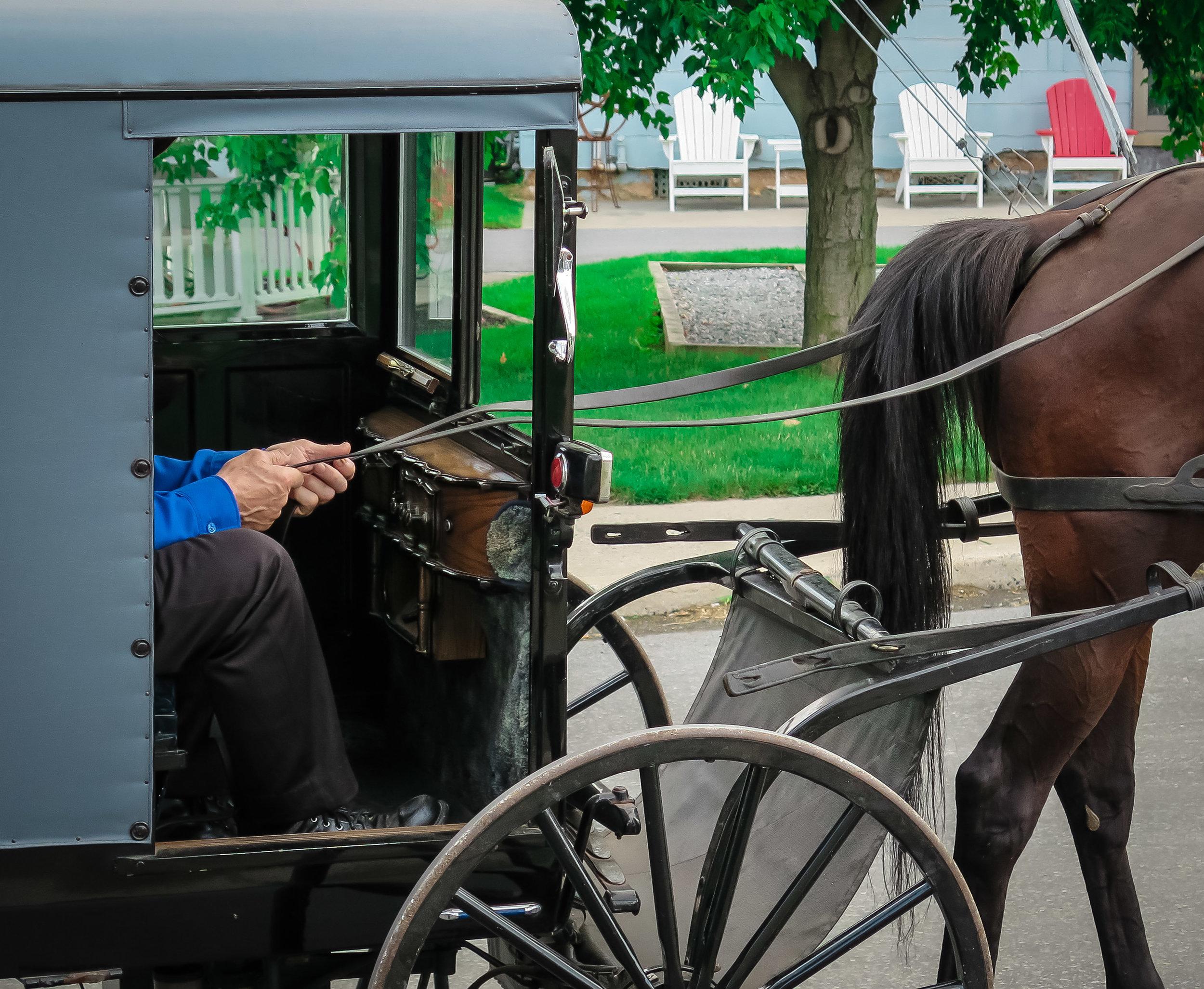 Amish-3.jpg
