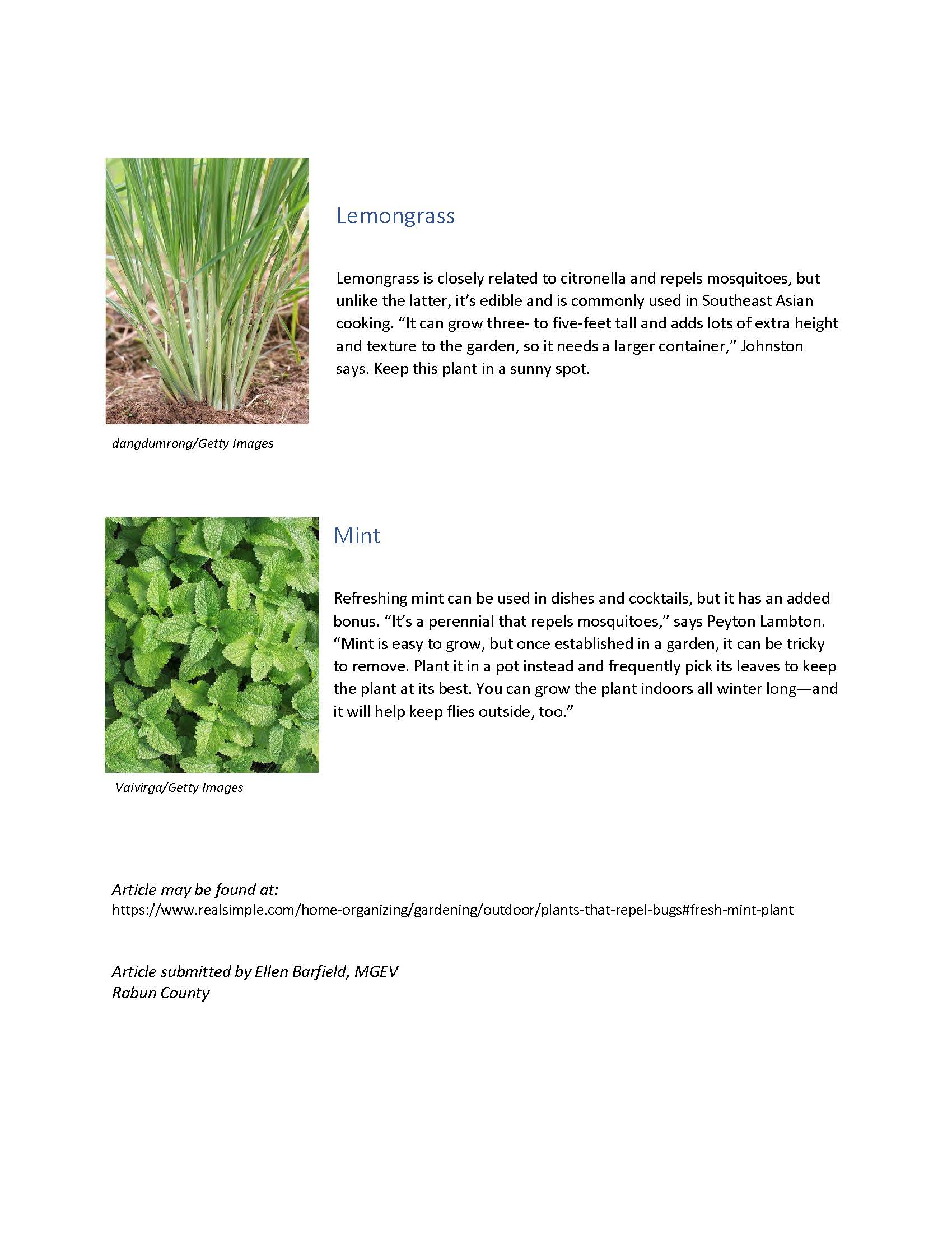 8 Plants That Repel Bugs_Page_3.jpg