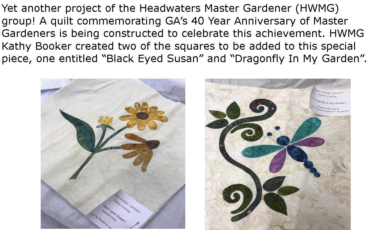 For more info on MG Quilting Workshop on August 23rd visit  https://site.extension.uga.edu/mgevp/2019/04/summer-workshop-for-our-commemorative-quilt/ .