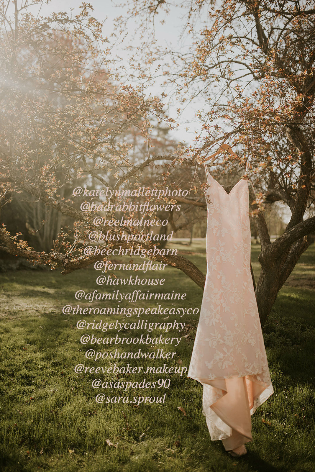 springeditorial dress credits.jpg