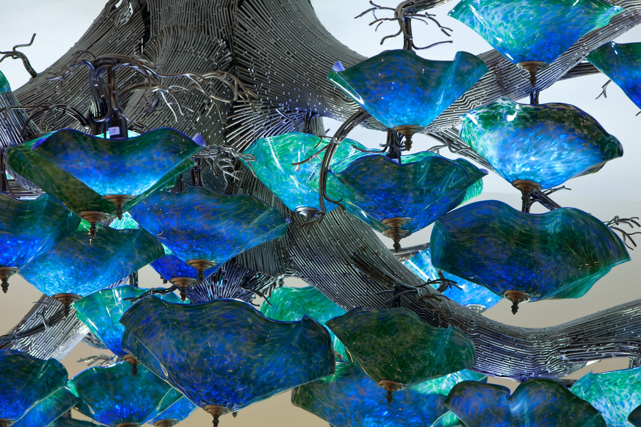 oak tree insert branches.jpg