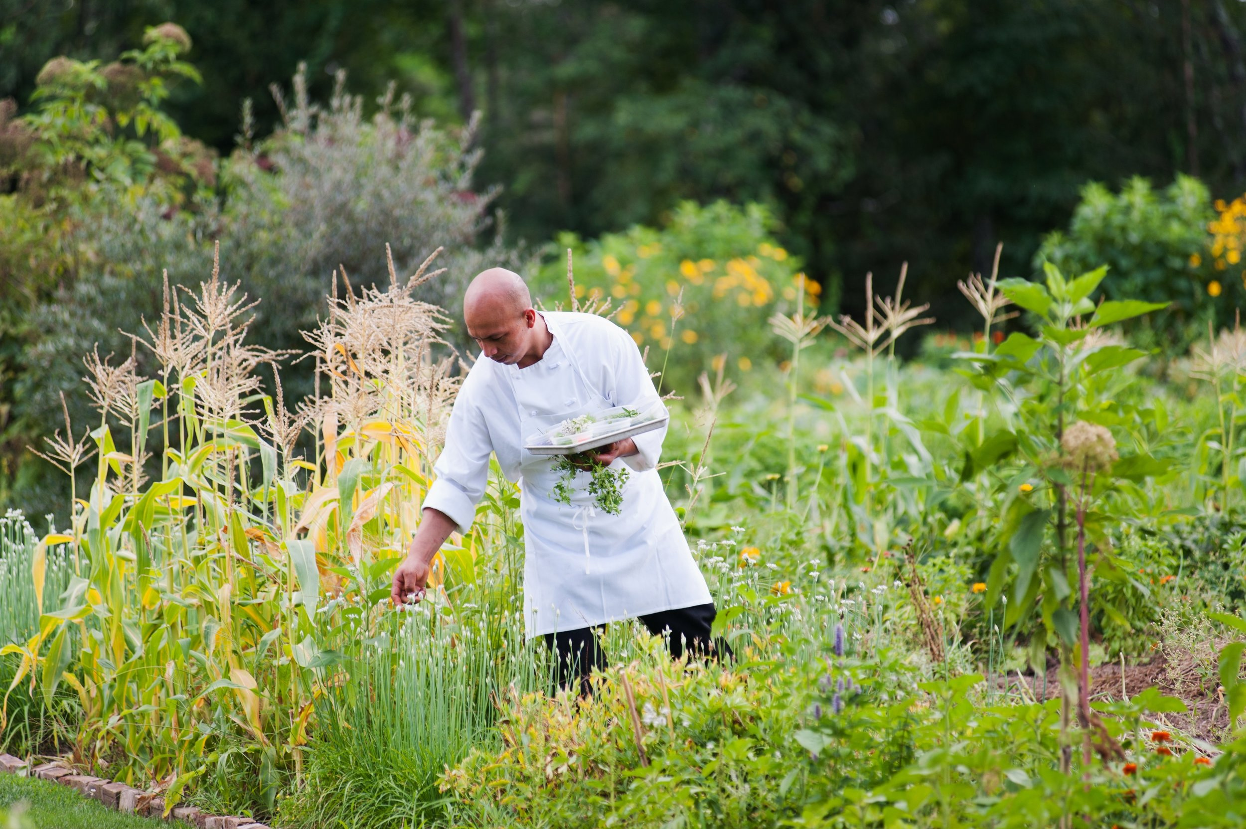 Copy of Chef Patrick in Garden 1 - Winvian Farm.jpg