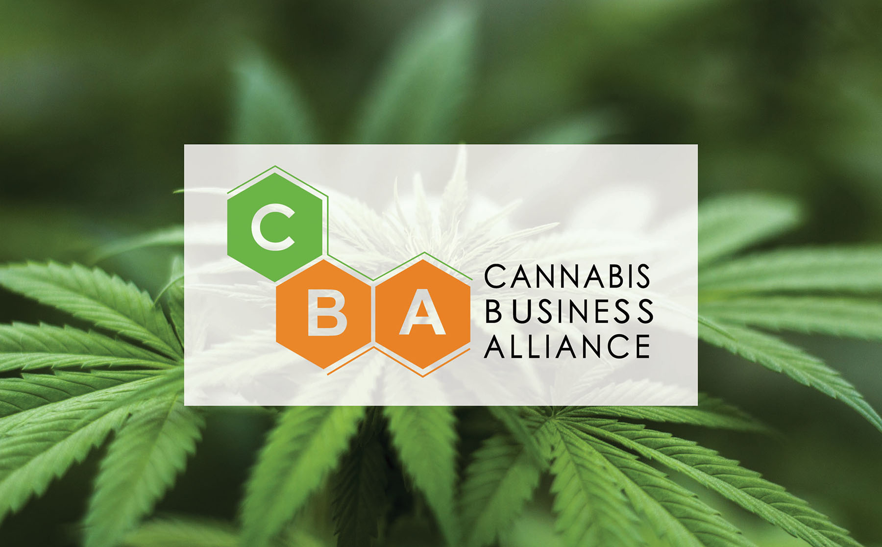 CBA Logo Photo.jpg