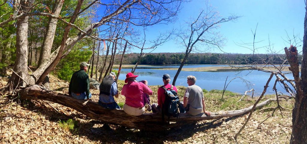 """Take in the view from the """"picnic log"""" along the Jeremy's Ramble trail."""
