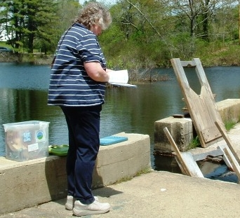 Click here for fish counting instructions -